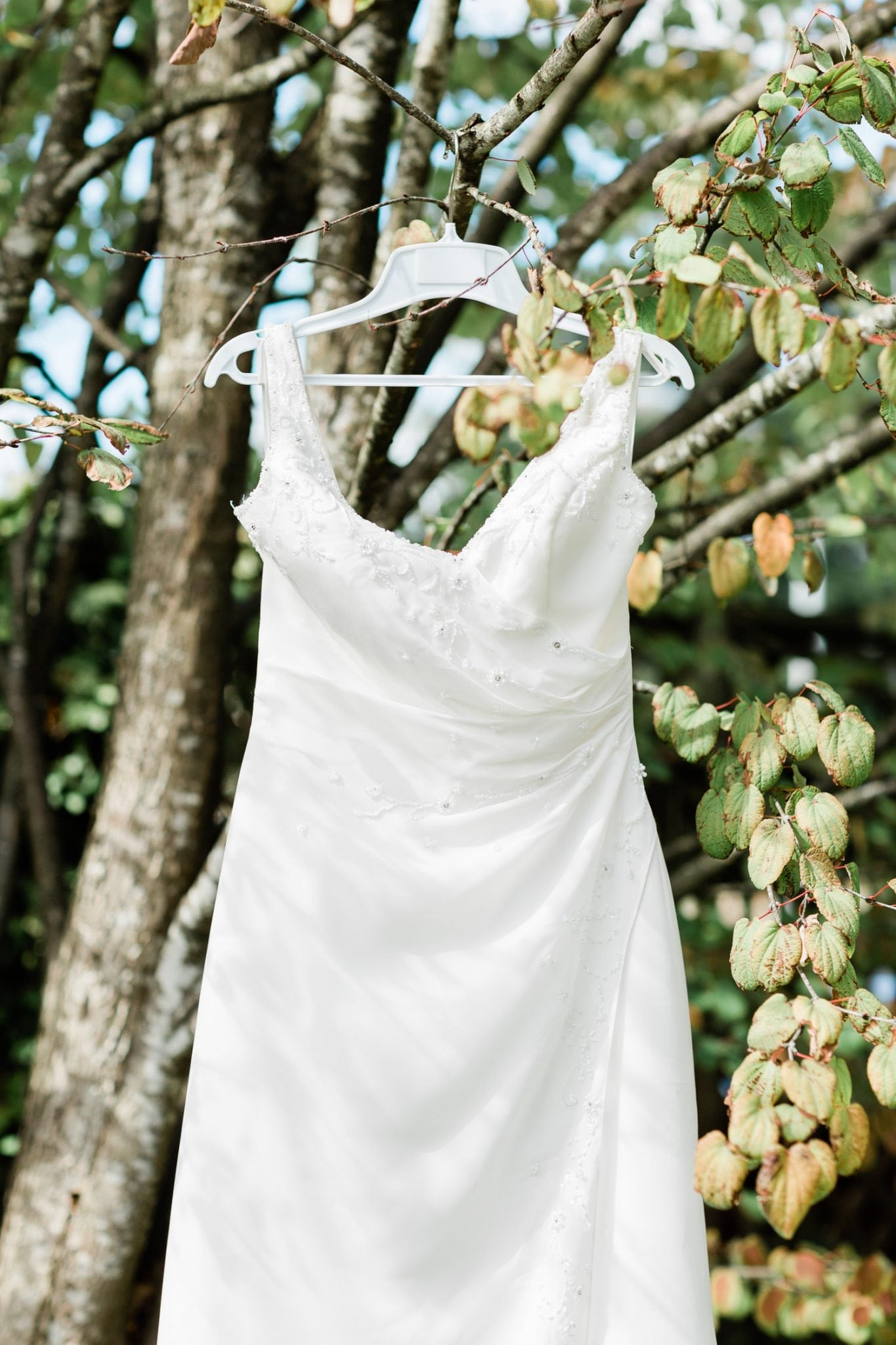 Wedding dress hanging on the treeLittle boy getting ready for a wedding | Vancouver wedding photographer