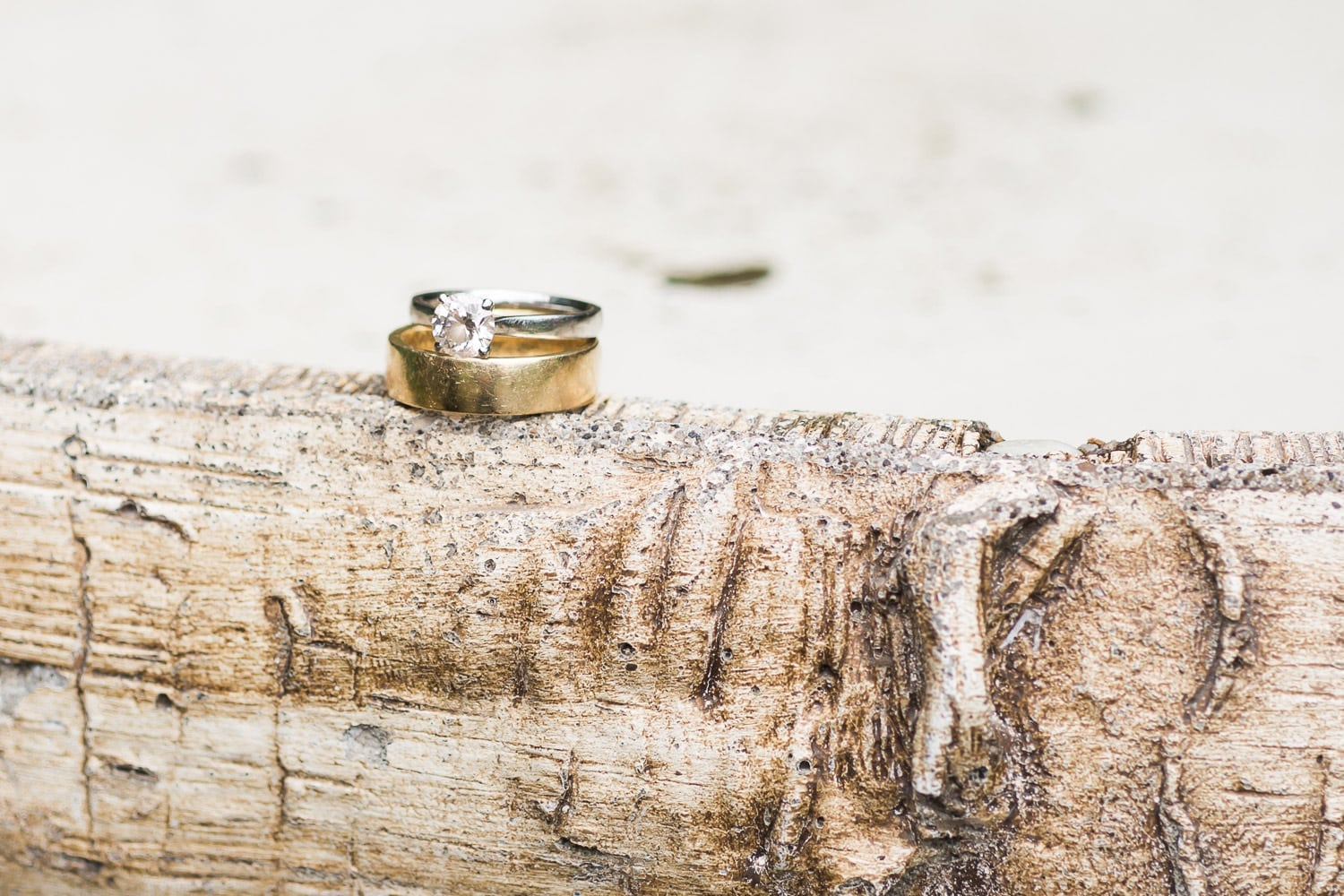 wedding rings picture | Vancouver Indian wedding photographer