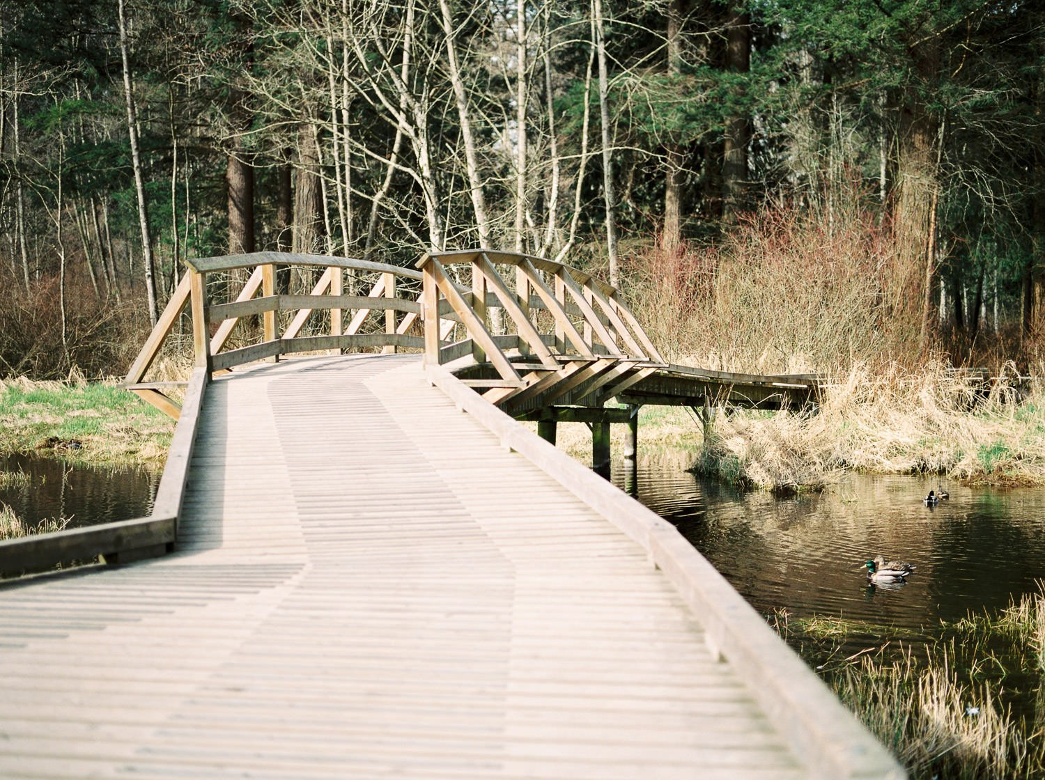 Classic wooden bridge