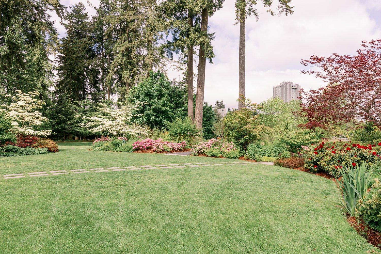 Vegetation at Holland park